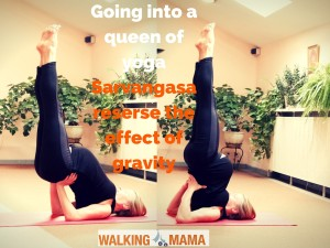 sarvangasana shoulderstand for pregnant