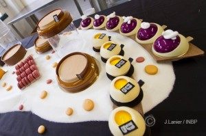 Guillaume Mobilleau's patisserie collection